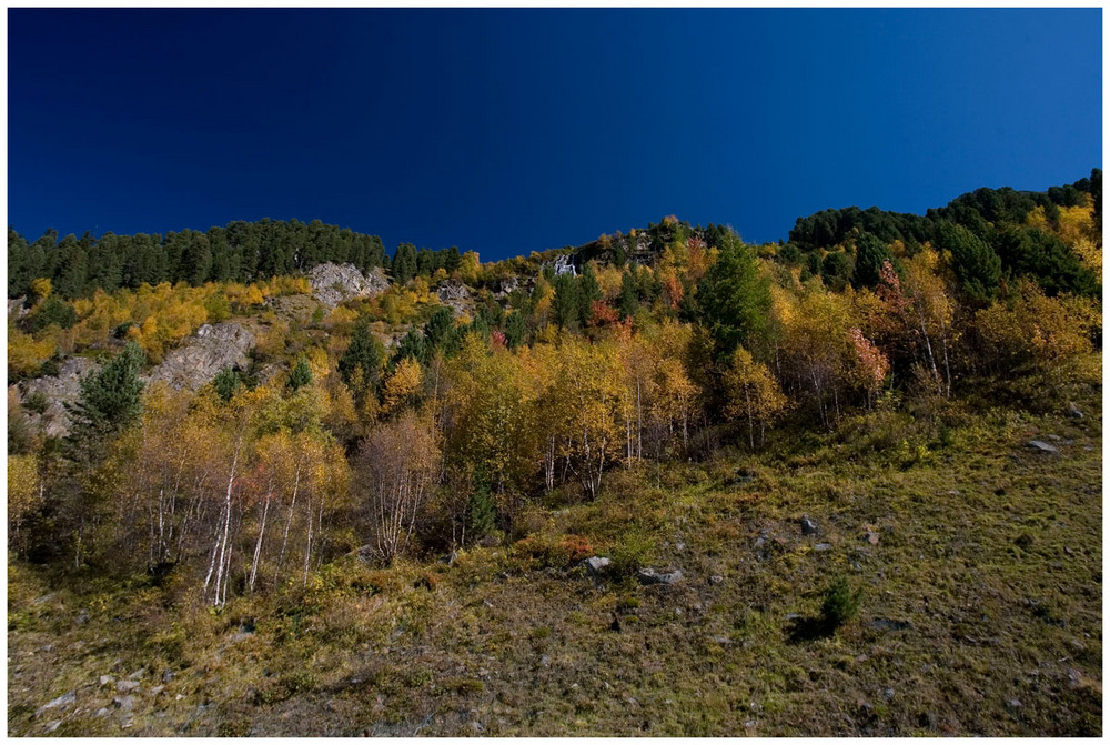 Herbstfarben im Kaunertal - Tirol