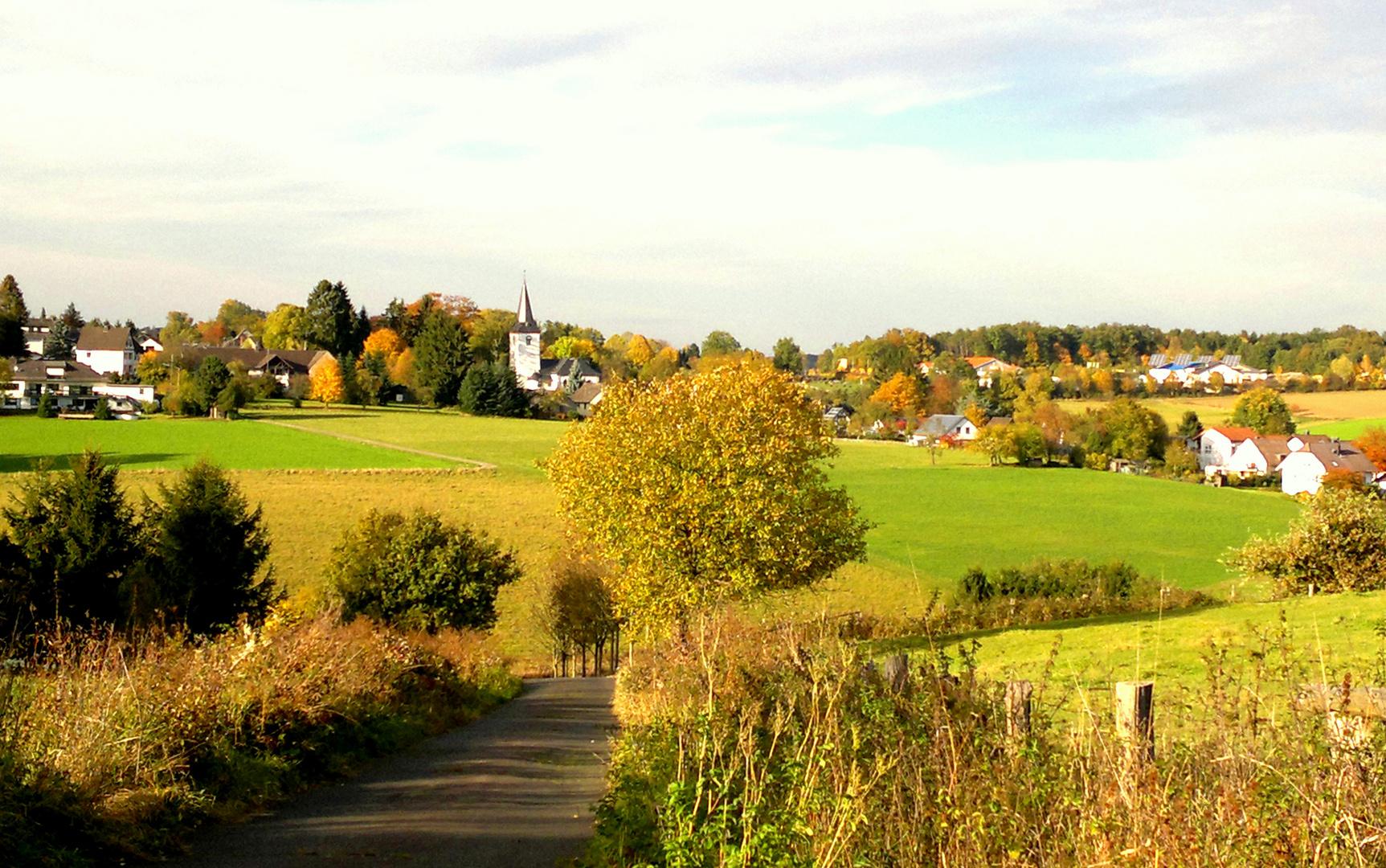 Herbstfarben im Westerwald