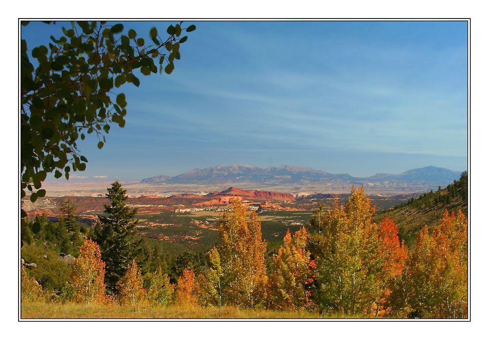 Herbstfarben in Utah