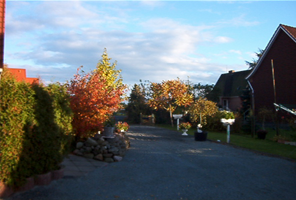 Herbstfarben künden von der Vergänglichkeit des Seins