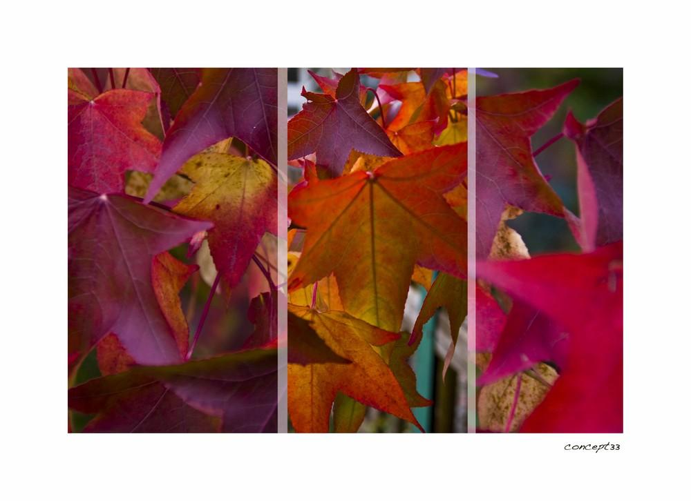 Herbstfarben Teil2