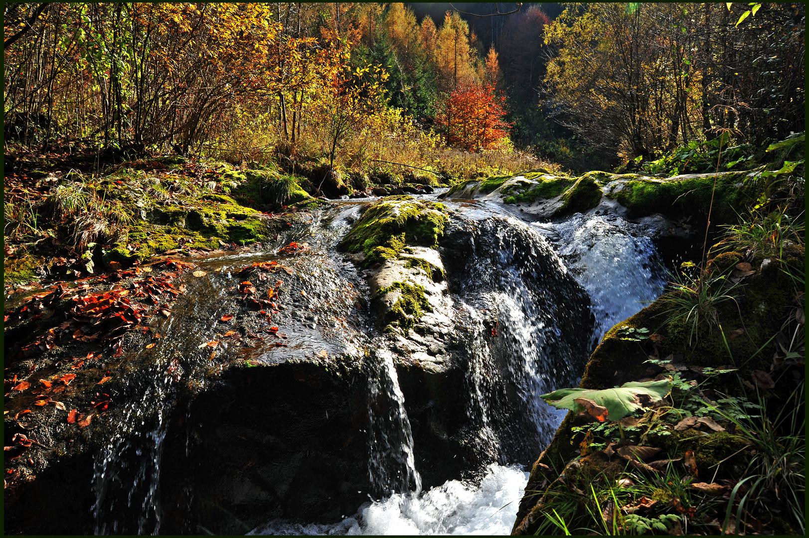 Herbstfarben verstärken die Stimmung