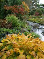 Herbstfarben_2