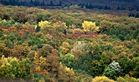 Herbstfarben_2013_01