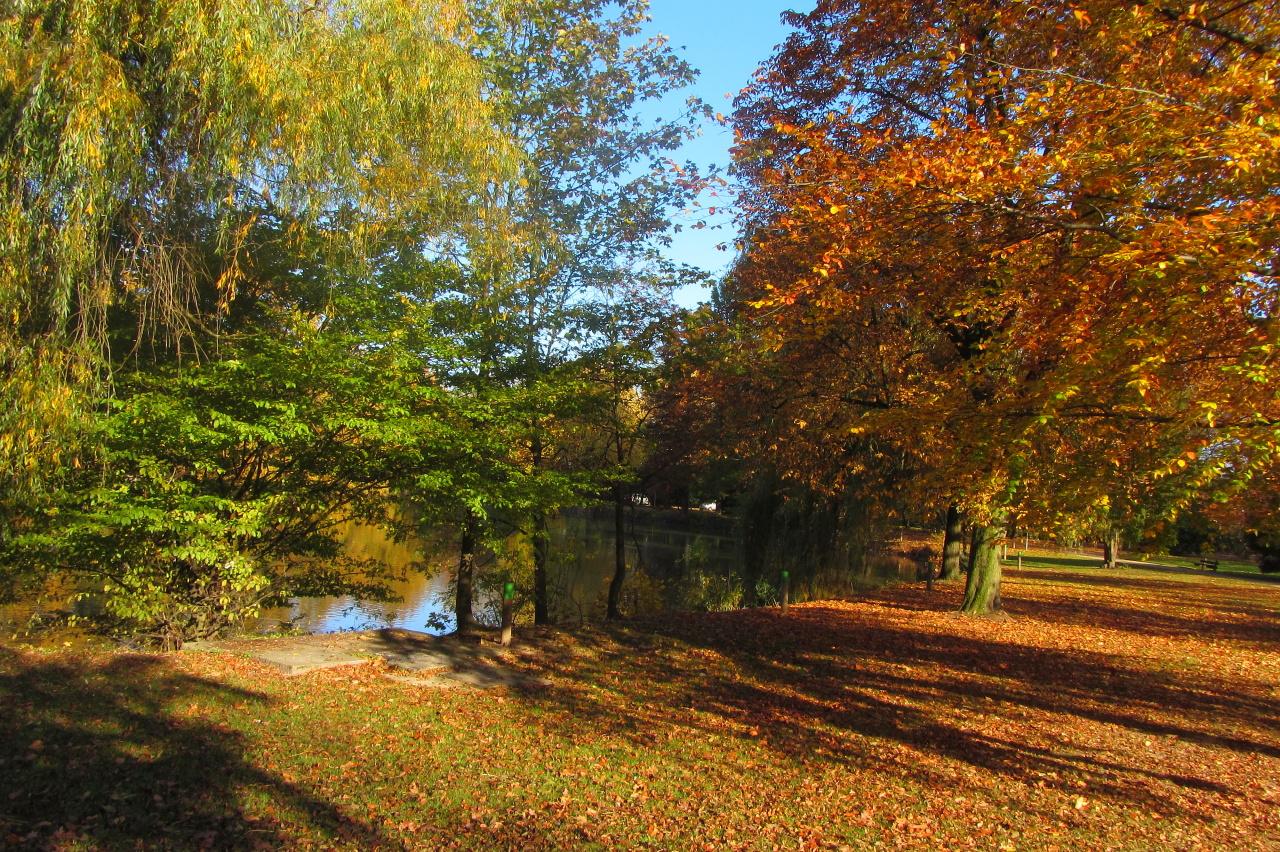 Herbstfarbenmischung