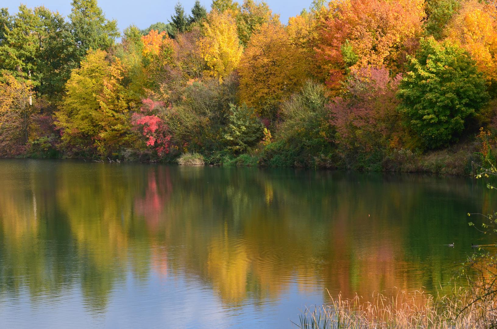 """Herbstfarbenspiel"" 2"