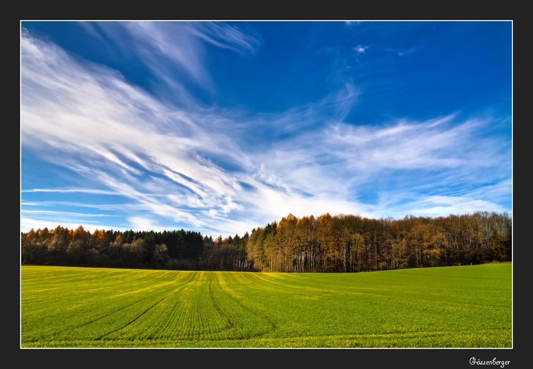 Herbstfelder 12