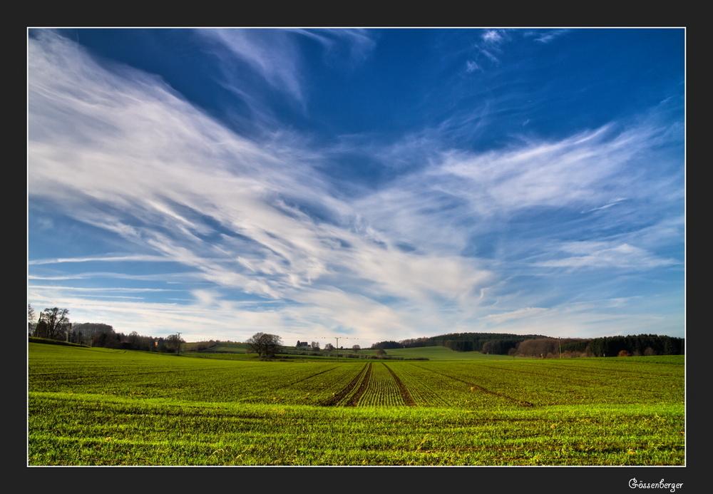 Herbstfelder 14