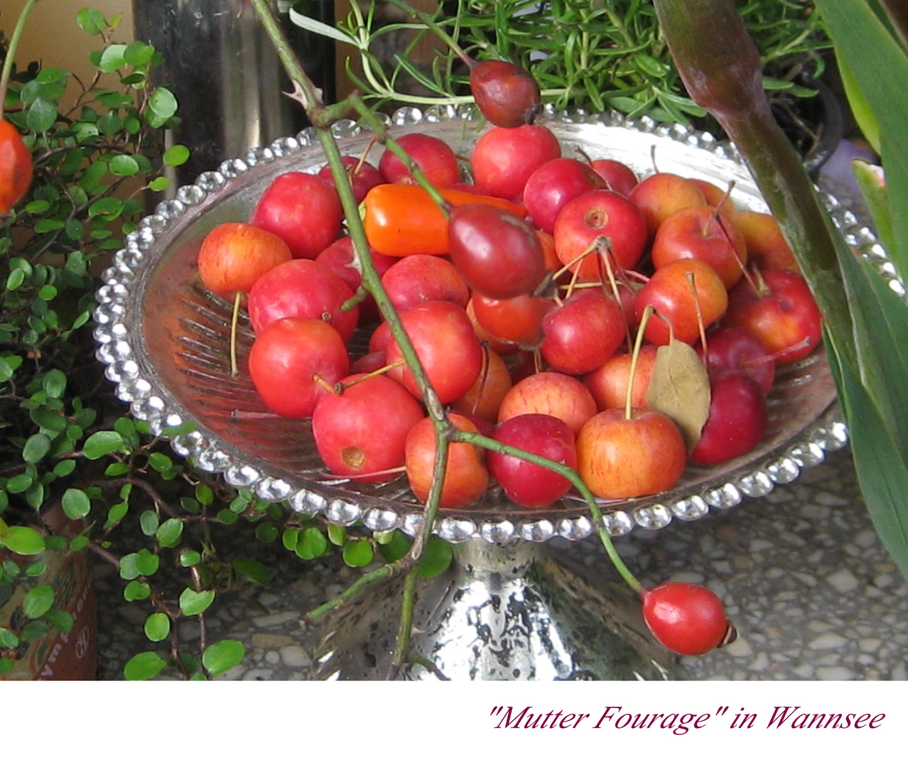 "Herbstfest ""Mutter Fourage"" IX"