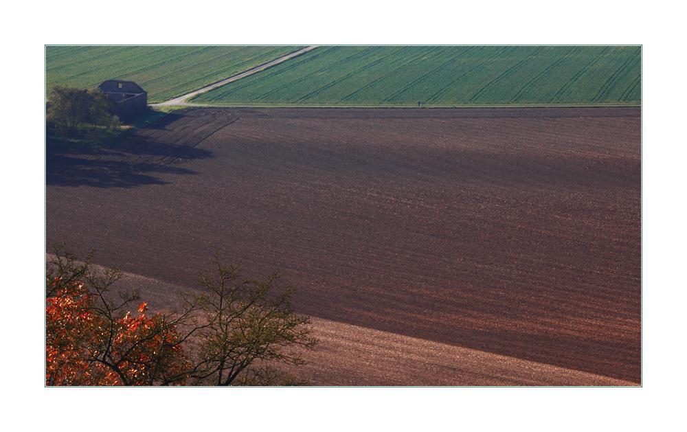 Herbstflächen gestaltet... - oder: der Lauf der Zeit...