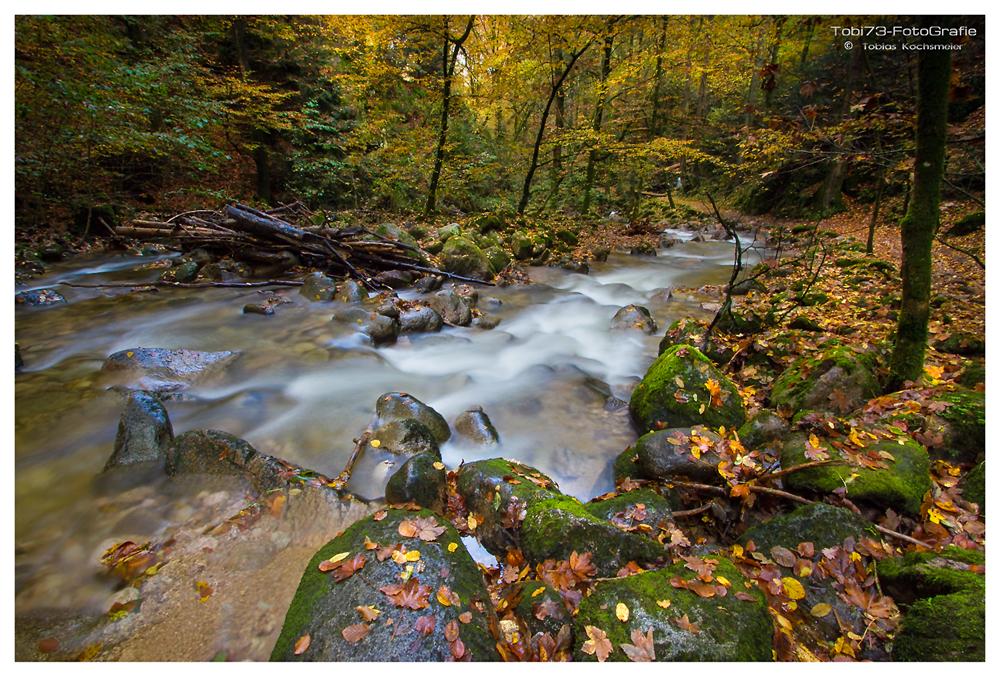 Herbstfluss...