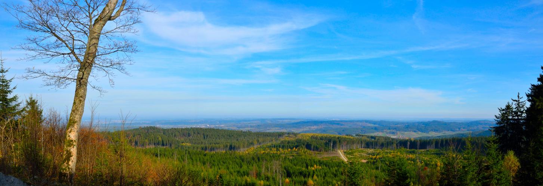 Herbstglühen am Nebelstein
