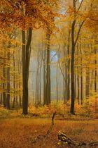 Herbstgold