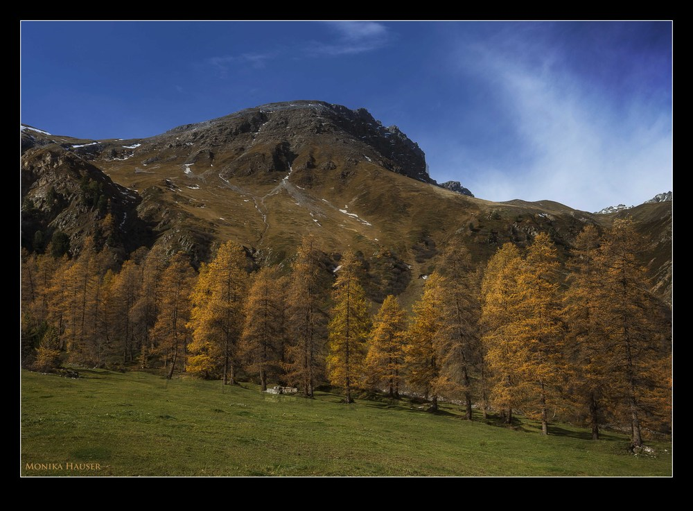 Herbstgold I