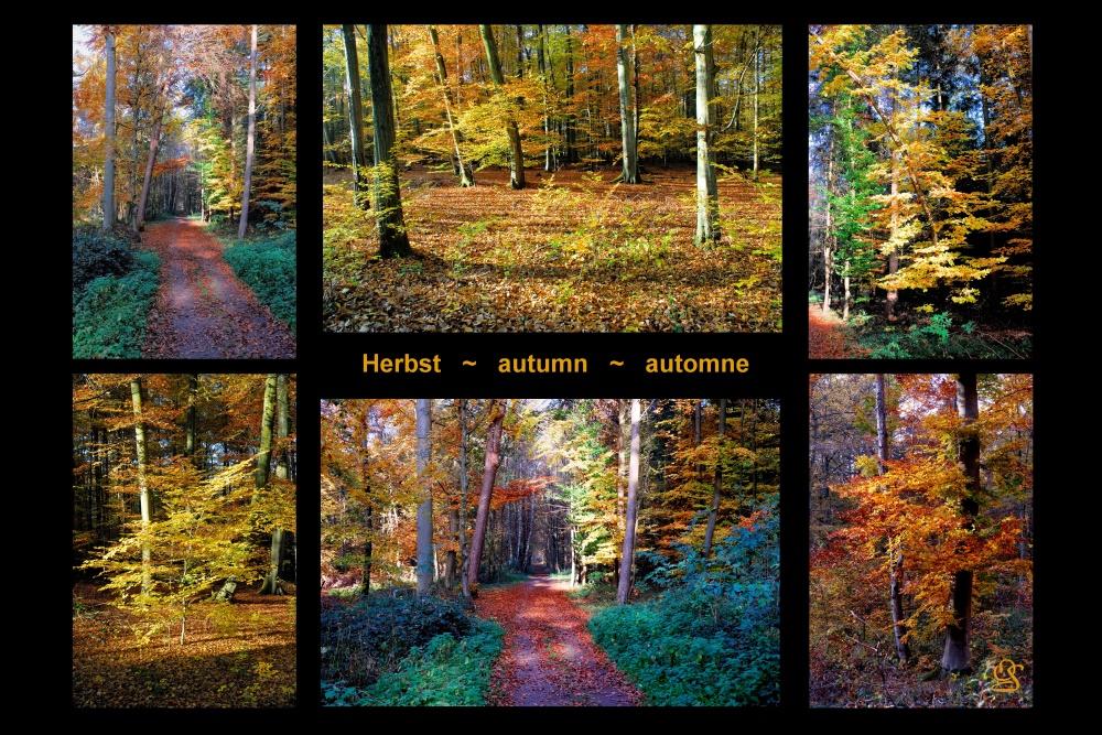 Herbstgrüße