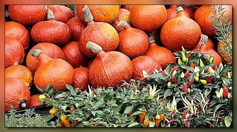 Herbstgruß vom Viktualienmarkt