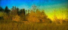 Herbstheide