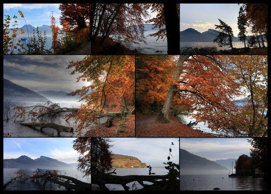 Herbstimmung 2 am Thunersee
