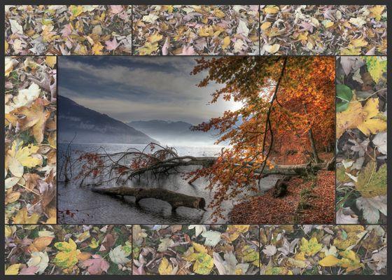 Herbstimmung am Thunersee