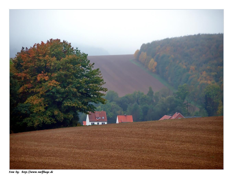Herbstimpresision auf dem Land