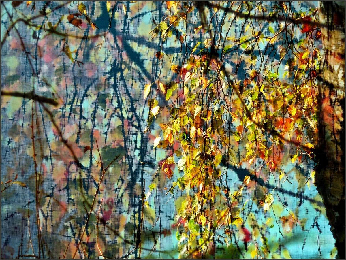 Herbstimpression (2)