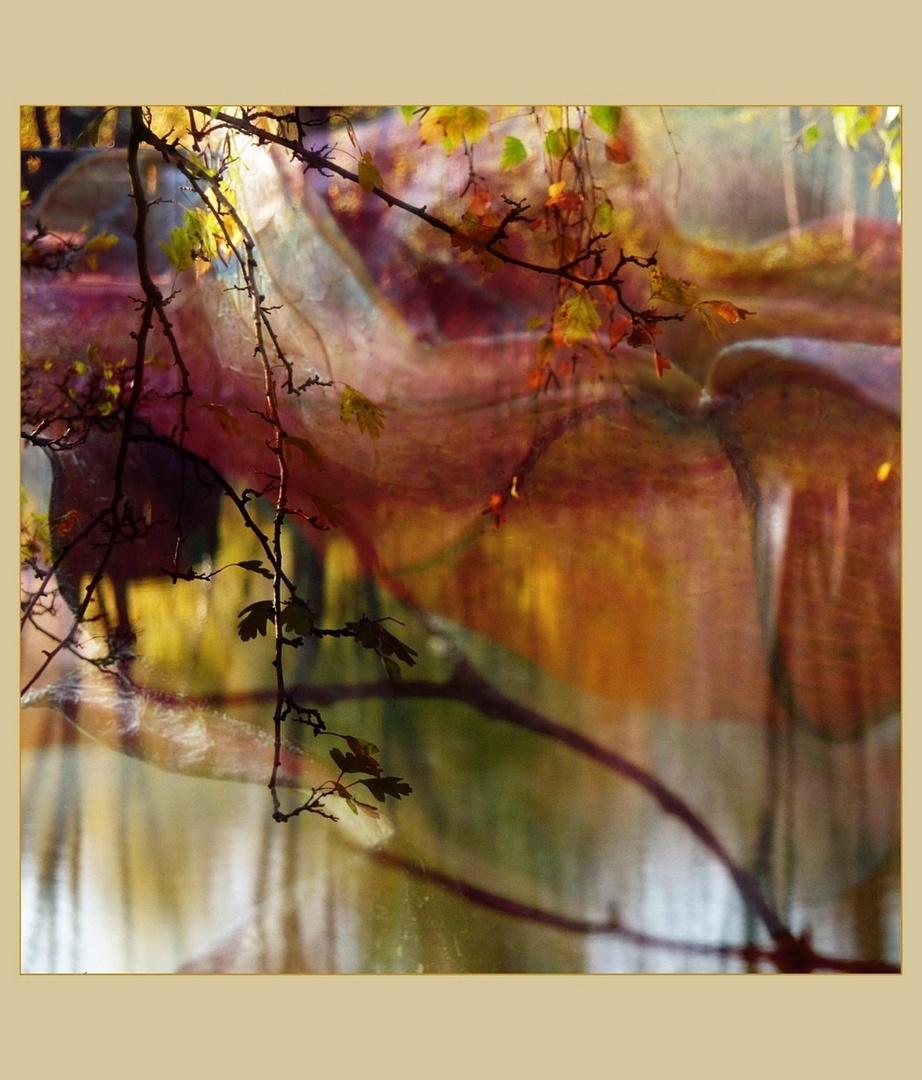 Herbstimpression (3)