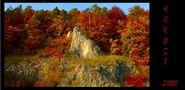 Herbstimpression von Melomanie