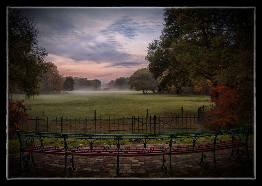 Herbstimpression aus dem Bürgerpark