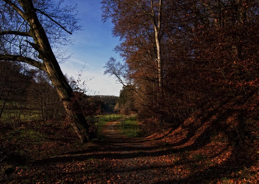 Herbstimpression III