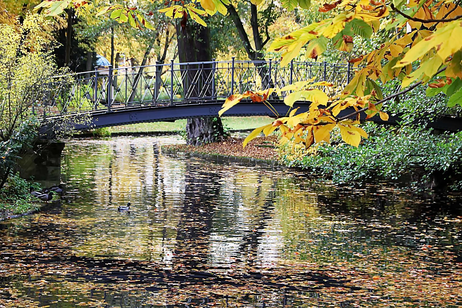 Herbstimpressionen III