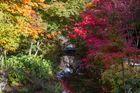 Herbstimpressionen im Schloss Arcen (NL)