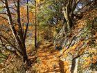 Herbstimpressionen! - L'automne est arrivé!