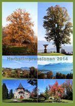 Herbstimpressionen V ...