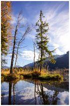 Herbstimpressionen vom Schwarzsee