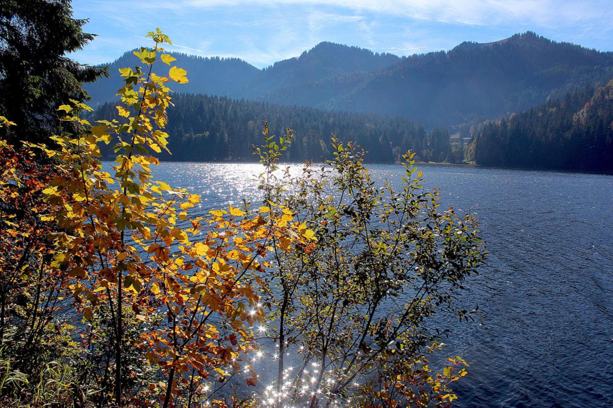 Herbstimpressionen von Spizingsee