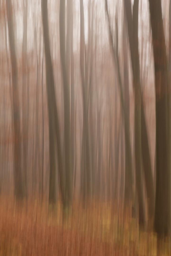 Herbst:impressionistisch