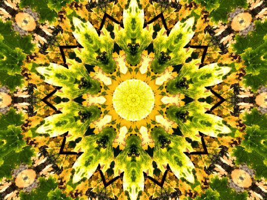 Herbstkaleidoskop