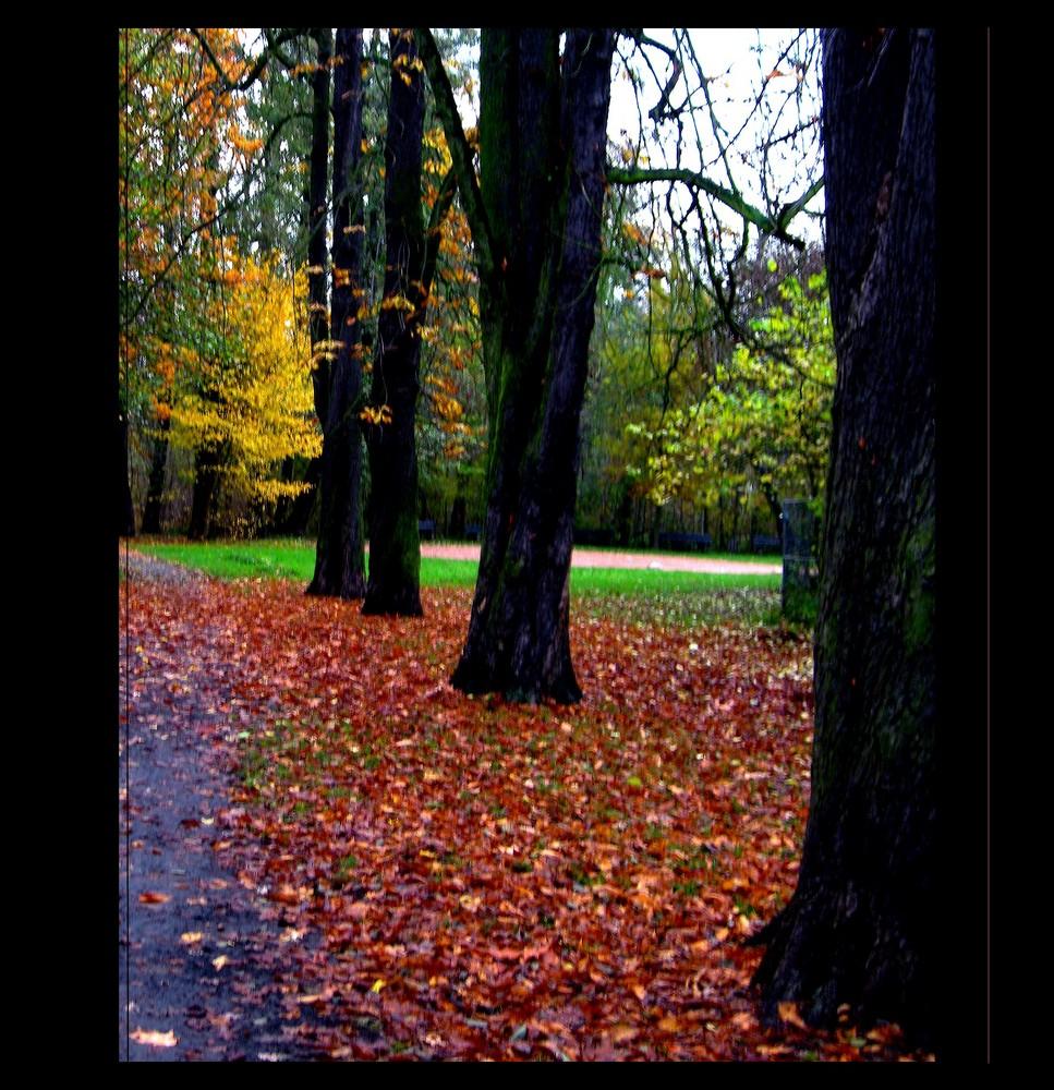 Herbstkontraste