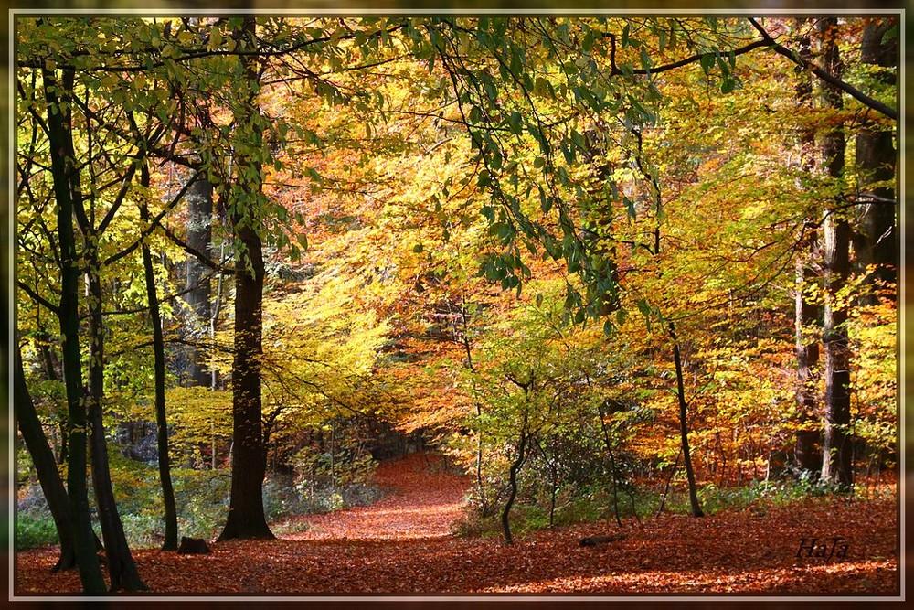Herbstlandschaft,,