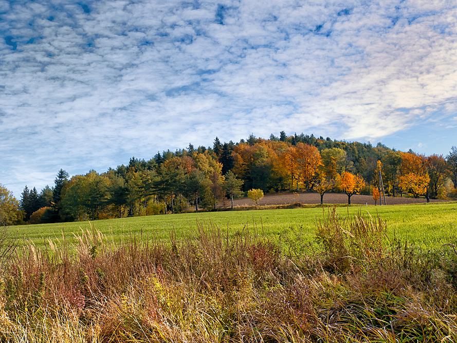Herbstlandschaft-2