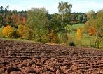 Herbstlandschaft #2