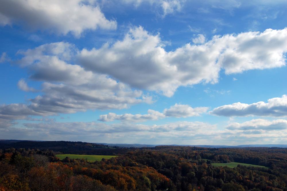 Herbstlandschaft bei Karlsruhe