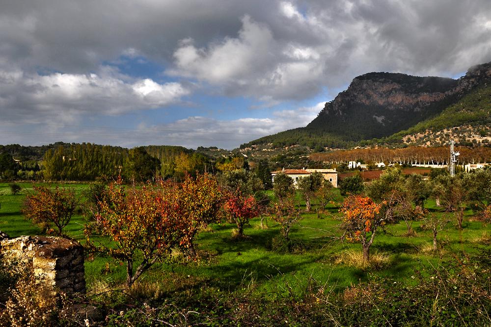 Herbstlandschaft bei Valdemossa