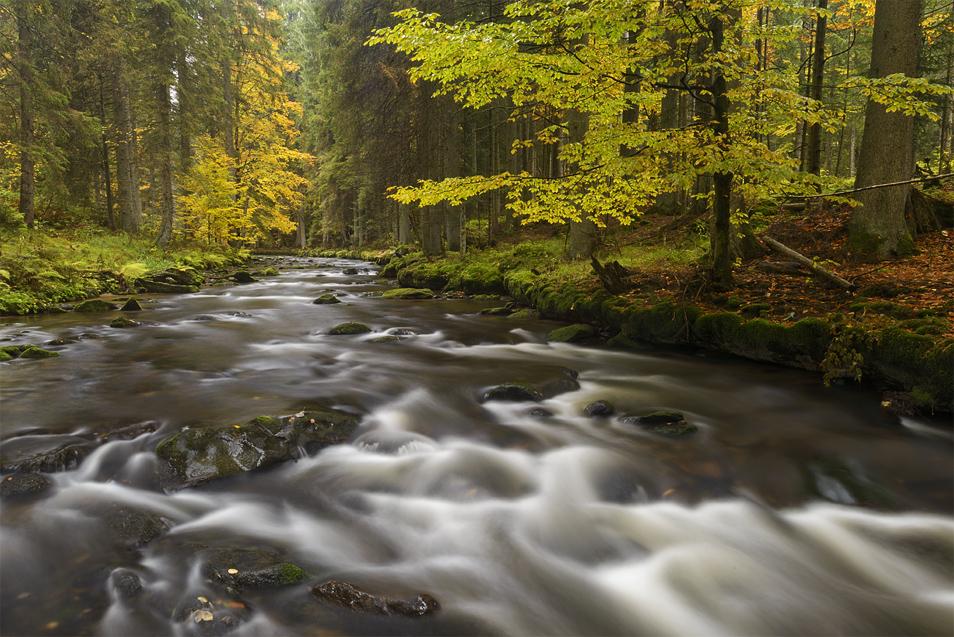 Herbst Landschaft