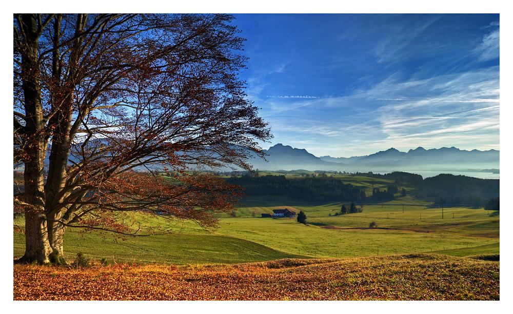 Herbstlandschaft...