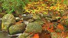 Herbstlandschaft Hohes Venn