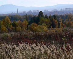 Herbstlandschaft im Industriegebiet