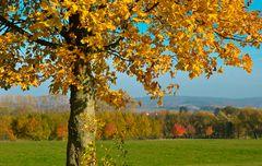 Herbstlandschaft im Lipperland