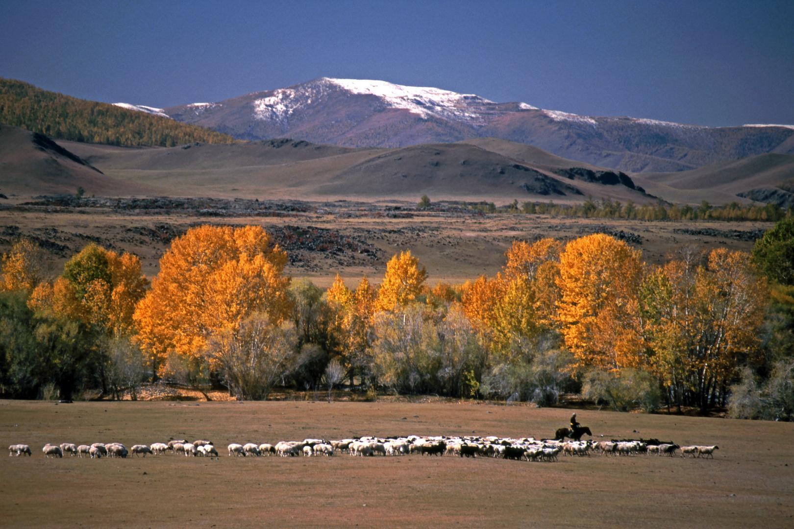 Herbstlandschaft im Norden der Mongolei
