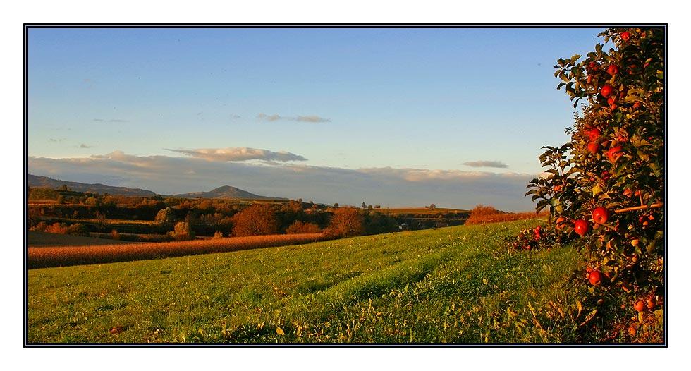 Herbstlandschaft in der Abendsonne